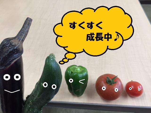 IMG_0636改